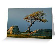 Dog Rocks, Batesford Victoria Greeting Card