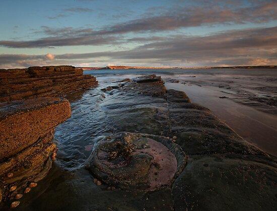 Dunnet Head, Caithness, Scotland by Martina Cross