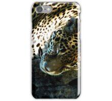 SLEEPING CHEETAH iPhone Case/Skin