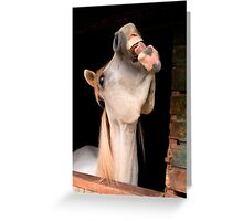 Laugh and the world laughs with you Greeting Card