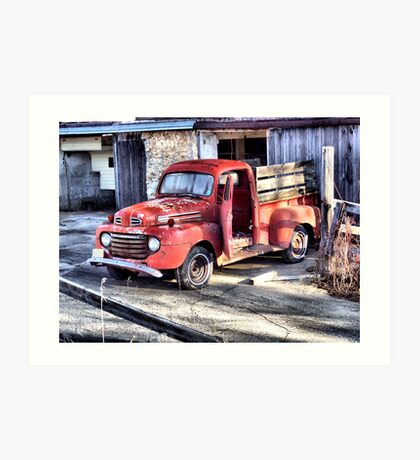 Confined to the Barn Yard Art Print