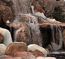 Freezing Waterfall by © Loree McComb