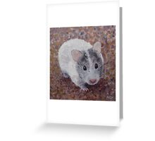 Jasmine My Hamster Greeting Card