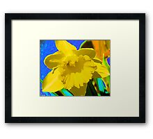 Daffodil Abstract Framed Print