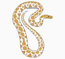 Albino Reticulated Python Art  by CustomExotics