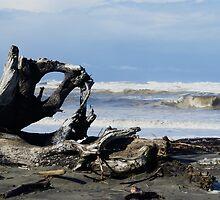 The Waves at Ocean Shores, Washington by Loisb