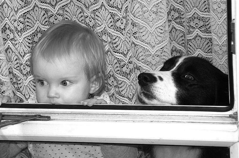 Watch dog and baby by Karen111