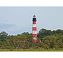 Assateague Lighthouse Photographic Print