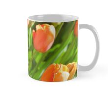 "Single late tulipa "" Stunning Apricot"" Mug"