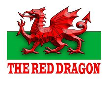 WELSH FLAG, WALES, WELSH, RED DRAGON OF WALES,  by TOM HILL - Designer