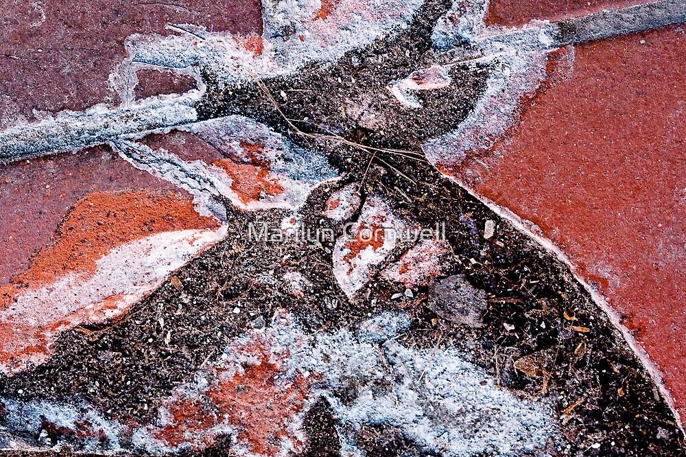 Archeological by Marilyn Cornwell