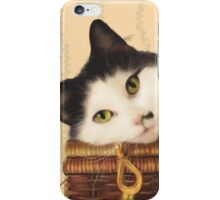 Cat on a picnic basket iPhone Case/Skin