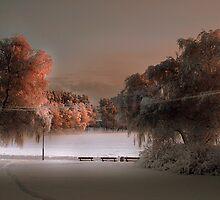 The Winterscene by Markku Mestilä