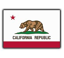 Californian Flag, Flag of California, California Republic, America, The Bear Flag, State flags of America, American, USA Photographic Print