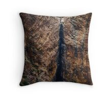 The dried waterfall Throw Pillow