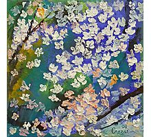 Sakura Oil Painting Photographic Print