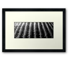 ridges - answered by tizzit in 1 guess - a seashell Framed Print