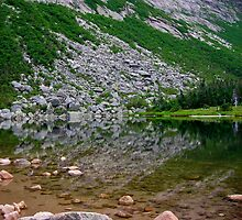 Chimney Pond Reflections by Alana Ranney