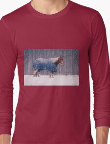 Equine Snowstorm Two Long Sleeve T-Shirt