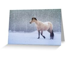 Equine Snowstorm Greeting Card