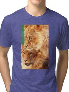 Brothers 2 Tri-blend T-Shirt
