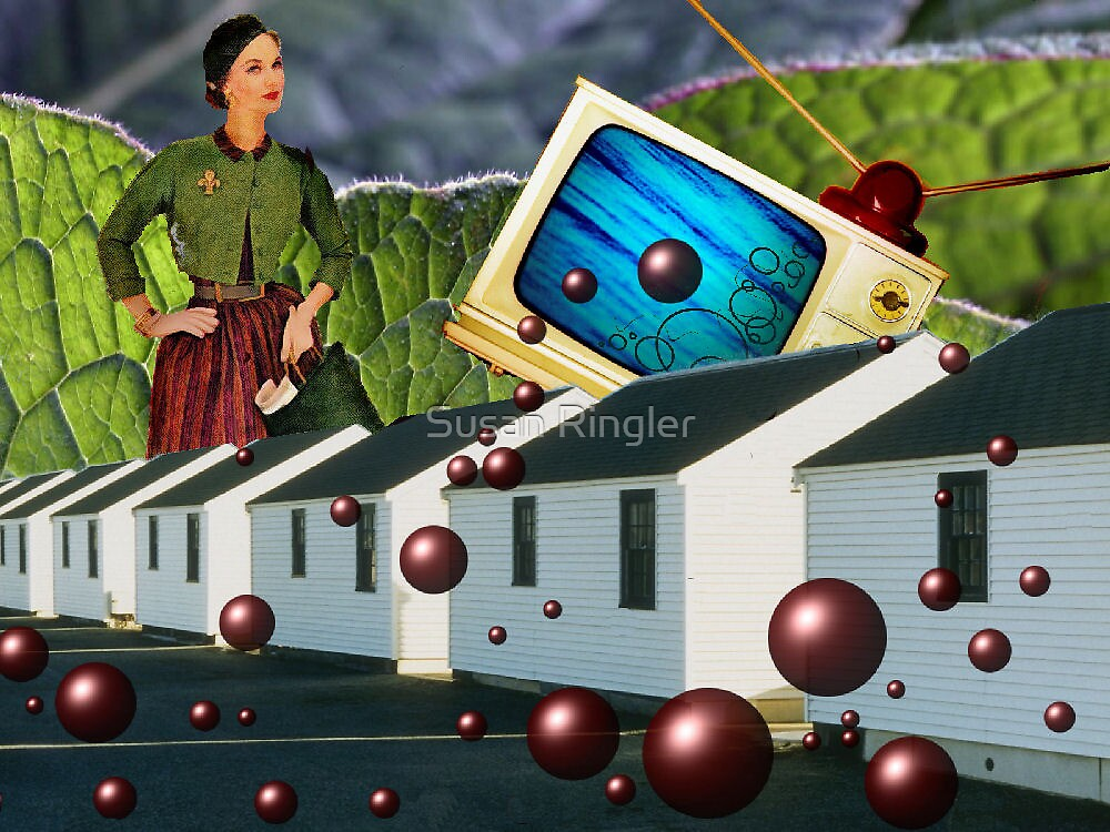 suburbia by Susan Ringler