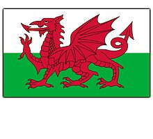 WALES, Welsh Flag, Pure & simple. Red Dragon of Wales by TOM HILL - Designer