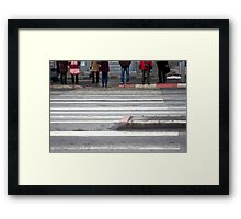 OnePhotoPerDay series: 040 by L. Framed Print