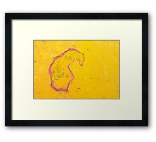 A Study In Paisley Framed Print
