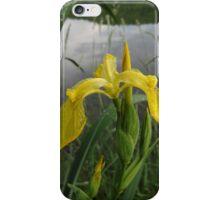 Just Beautiful iPhone Case/Skin