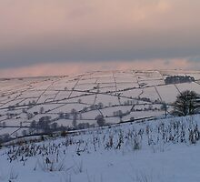 Winter Scene above Pately Bridge - North Yorkshire by Kat Simmons