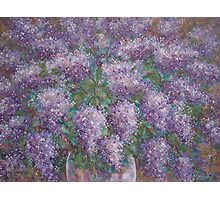 Lilac Burst Photographic Print