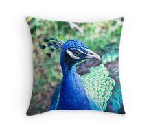 Beautiful Bold Peacock Throw Pillow