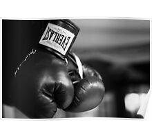 Everlast Boxing Gloves (Black And White)  Poster