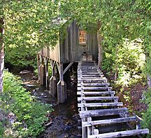 Historic Mill Creek Discovery Park by Monnie Ryan