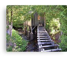 Historic Mill Creek Discovery Park Canvas Print