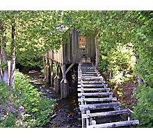 Historic Mill Creek Discovery Park Photographic Print