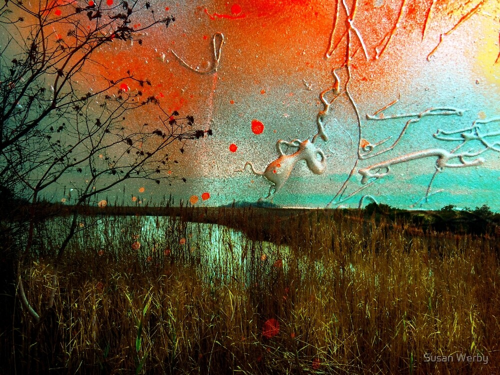 Paint My World by Susan Werby