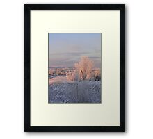 The Morning Frost Framed Print