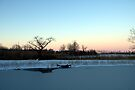 Buckhorn Pond by Kim McClain Gregal
