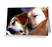 Trooper & Rosie .... too tired! Greeting Card