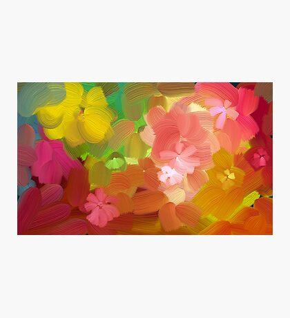 Happy colours Photographic Print