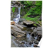 Cowshed Falls, Moravia New York Poster