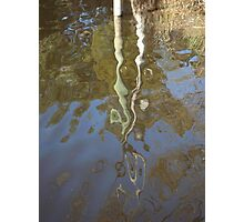 Post Reflection Photographic Print