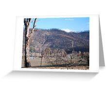 Black Saturday Bushfires in Victoria Greeting Card