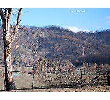 Black Saturday Bushfires in Victoria Photographic Print