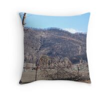 Black Saturday Bushfires in Victoria Throw Pillow