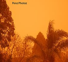 A dust storm with a difference by Penny Brooks