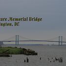 Delaware Memorial Bridge Postcard by RockyWalley