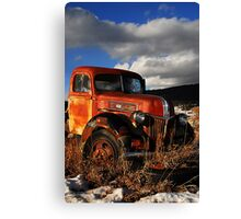 Cold and Snow Canvas Print
